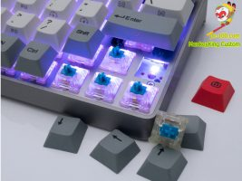 hot swappable switches